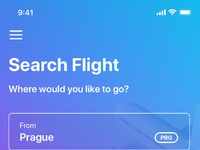 Search flight