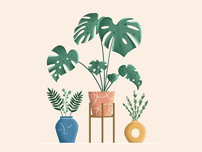 Plants character design flowers plants vector vector art vector illustration digital illustration digital art design illustration illustration art