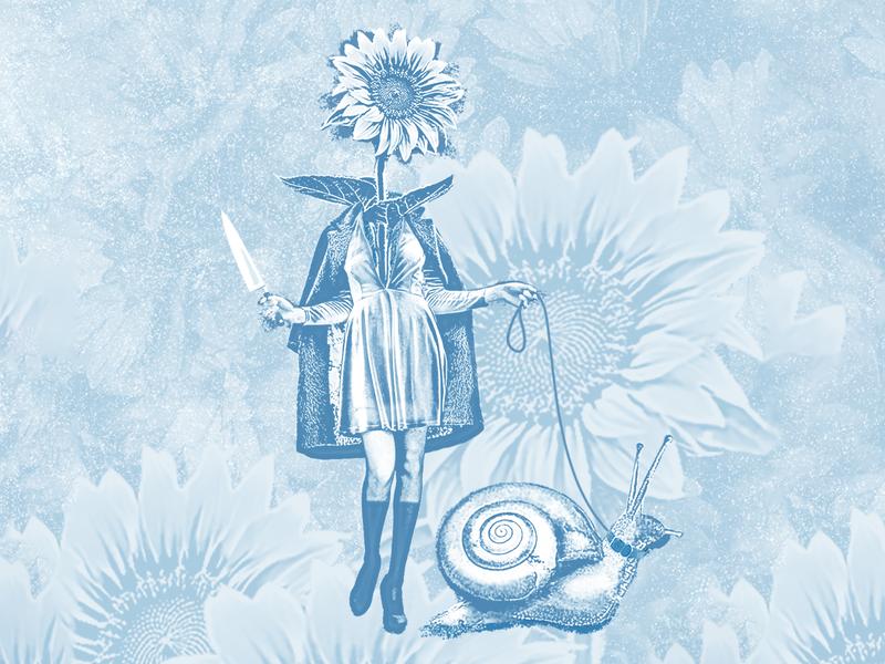 Sunflower Woman art blue composite photoshop photoshop art snail woman sunflower