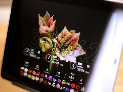 Bloomclock HD (iPad App) bloomclock ipad clock time flower bloom timelapse