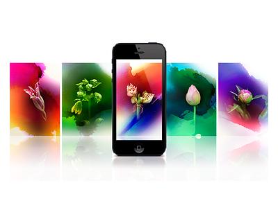 Bloom Card design icon illustration photoshop movie gif