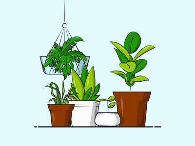 Flat Vector Illustration Series happy sap home plants hang water illustrative vector garden green flower pot squad leaf plants designer graphicdesign