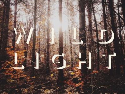Good Medicine, Vol. 27 album art photography typography fall seasons trees autumn music