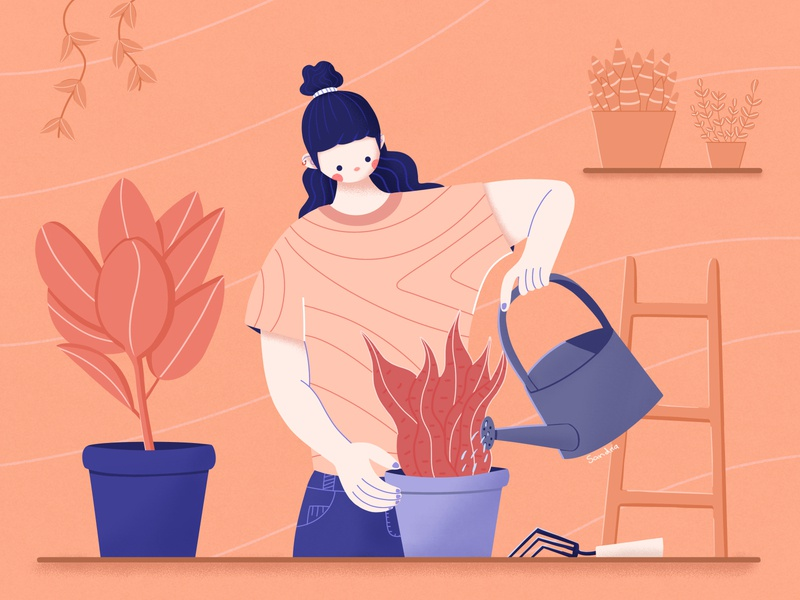 Connection 🌱💦💚 indoor plant connect explainer video plants love stylized character design character girl photoshop flat illustrator illustration