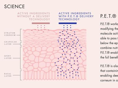 Sesha Skin Therapy Illlustration illustration diagram science skin