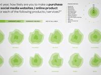 Consumer Social Media Use