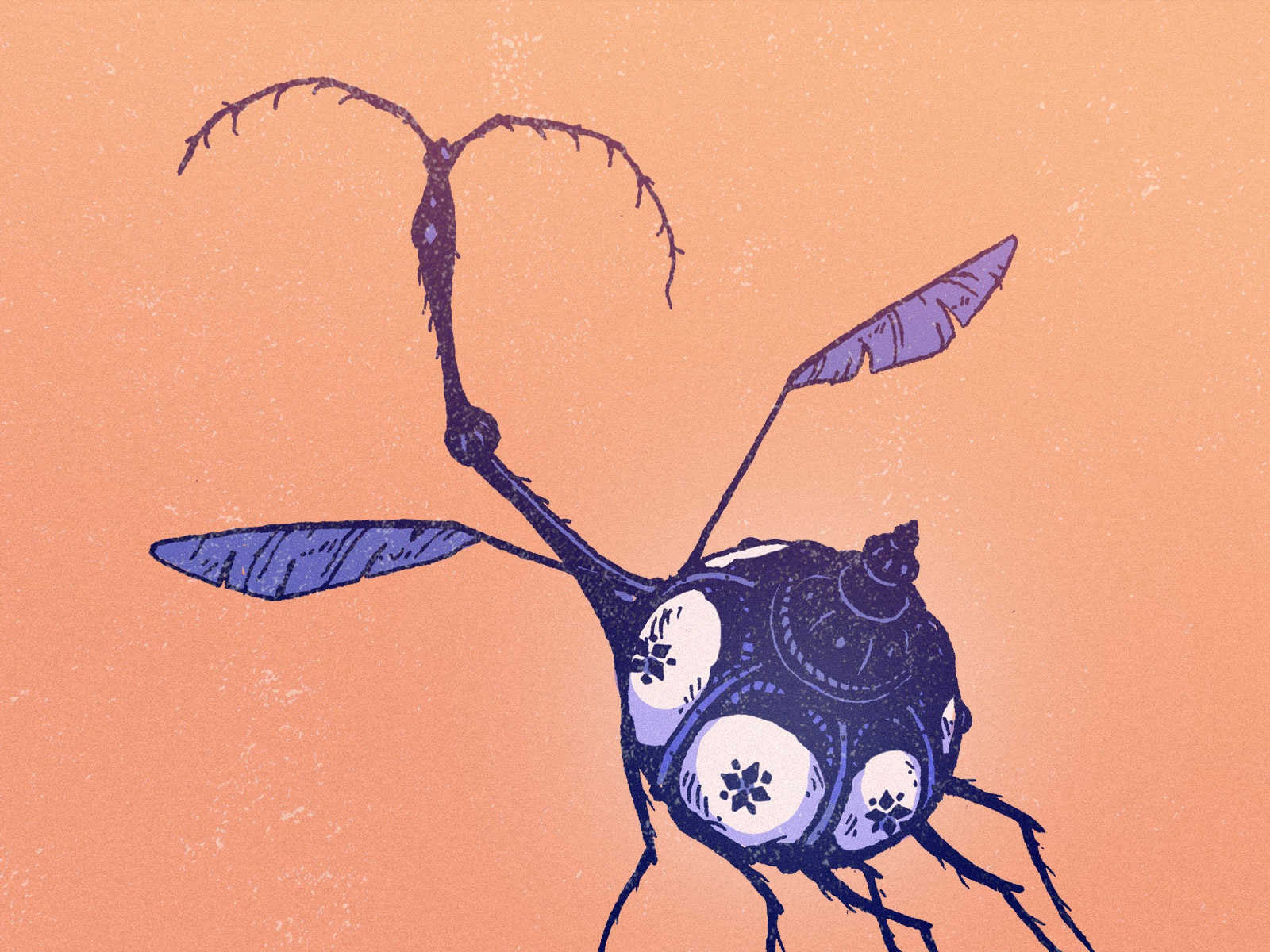 Lumine beetle