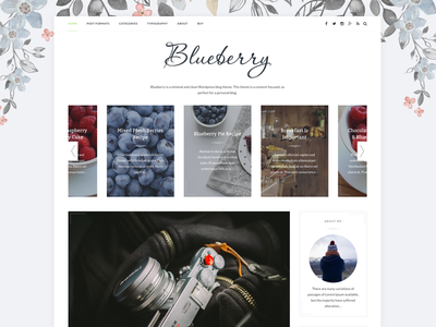 Blueberry - A Responsive WordPress Blog Theme