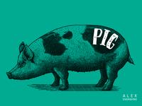Engraving-pig