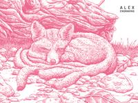 Engraving 九尾狐