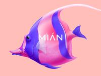 Mian  tropical fish