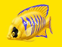 Mian fish