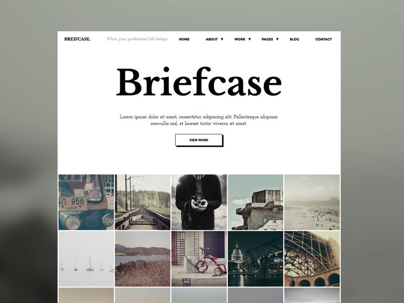 Briefcase HTML Template html minimal themeforest web design