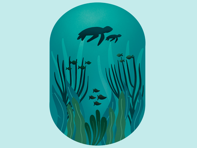 Ocean Life marine life nature ocean graphic design procreate illustration