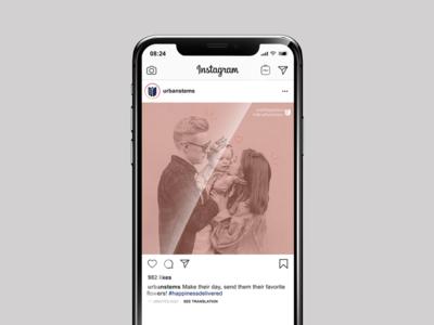 Urban Stems marketing illustration branding graphic design social media