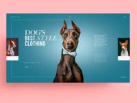 WEBSITE - DOG