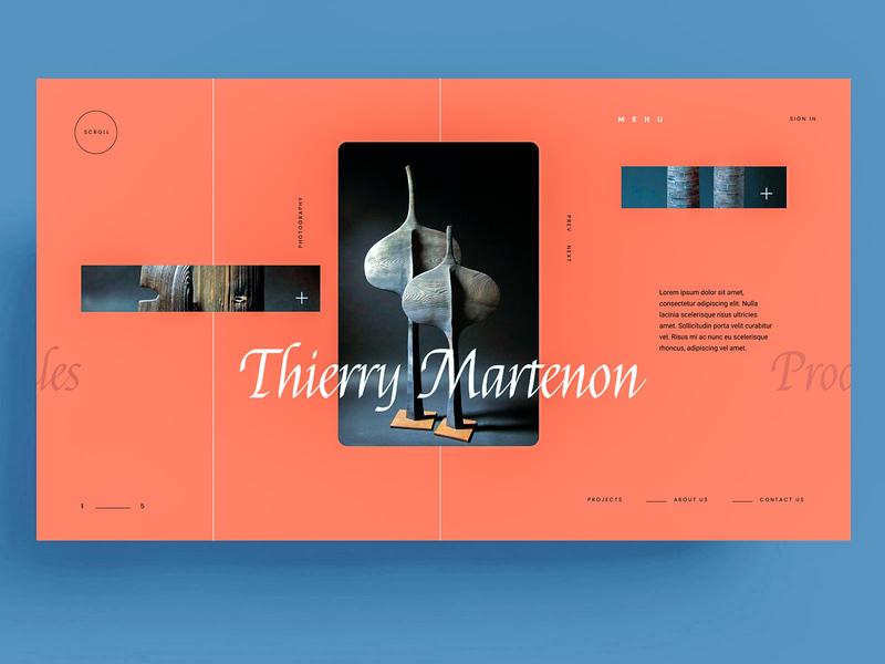 WEBSITE - THIERRY MARTENON