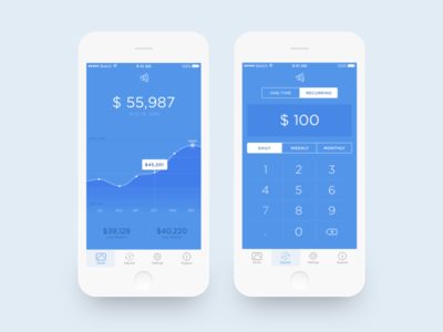 Money Management money app ui