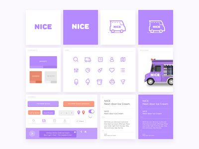 Nice Style Guide icecream style guide icon delivery branding