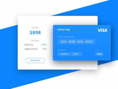 Credit Card Checkout - DailyUI 002 daily ui credit card checkout
