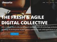 Amazorize Redesign