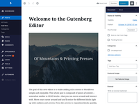 WordPress Admin Theme (Gutenberg)