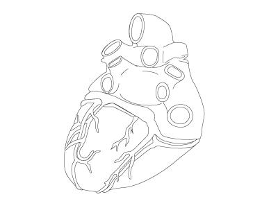 Heart Linework linework anatomy black and white bw