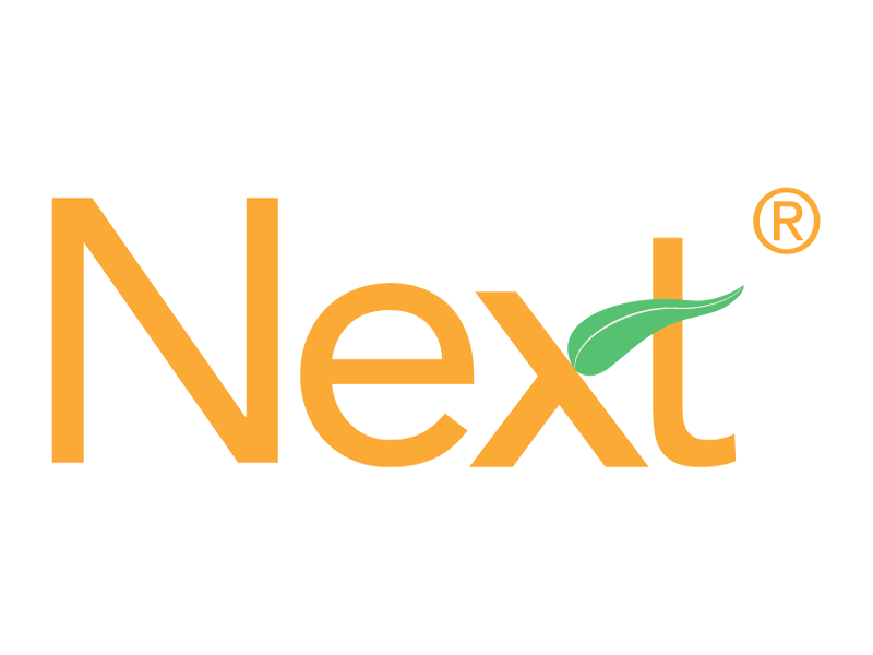Next logo branding sans serif logo