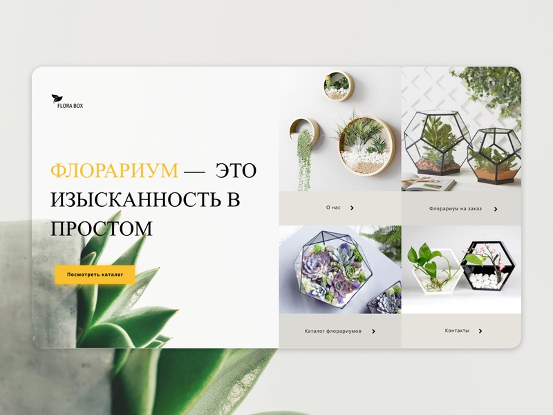 Florarium flora flowers flower website web ux ui flat figma design