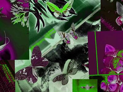 Experimental Album Cover visualcommunication narrative product design abstract procreate photography graphic design concept illustration graphic design