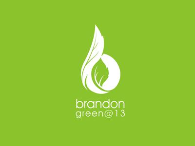 Brandongreen 13
