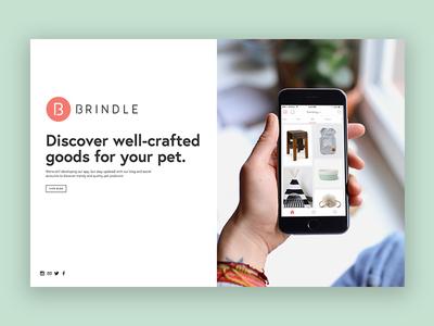 Brindleapp.com