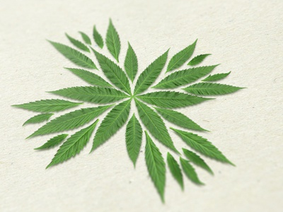 Medical cannabis logo medical cannabis logo cross leafs marijuana flower herbal health