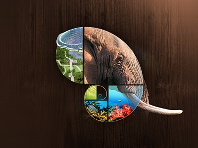 Fibonacci elephant logo collage logo symbol elephant biozones spiral fibonacci golden ratio golden spiral nature collage icon sacred geometry zoo aquarium photo manupulation