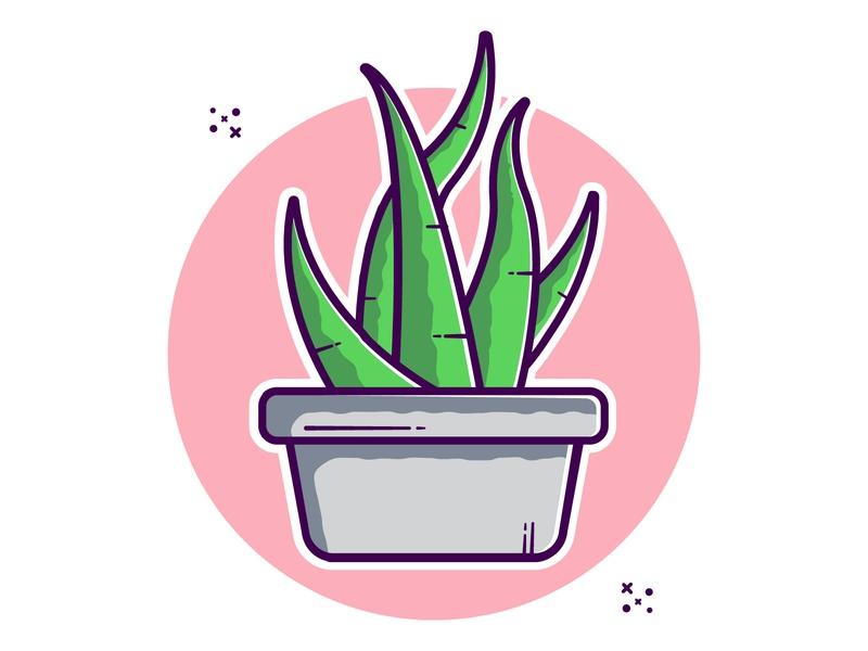 Aloe Vera illustraion cute art clipart cartoon vector vector illustration minimal illustration pot plant house plant succulent aloe vera aloe