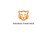 Orange Panther Accessories