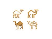 Camel versions