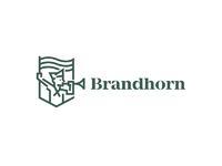 Brandhorn2