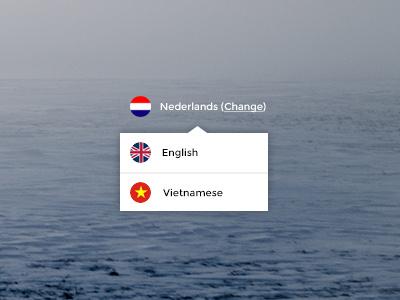 Language Switcher language option choose english