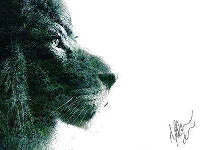 Nature of the Beast - 1 digital art direction photoshop art double exposure rainforest trees lion head mane lion agameoftones wild animals big cat chicago photography