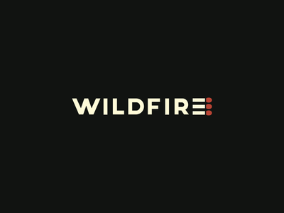 Wildfire smolkinvladislav mark logo e match matches fire wildfire