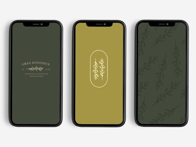 Greg Donohue Photo colorado photographer branding logo boulder denver colorado phototgrapher photography iphone phone mockup woods rustic clean yellow green