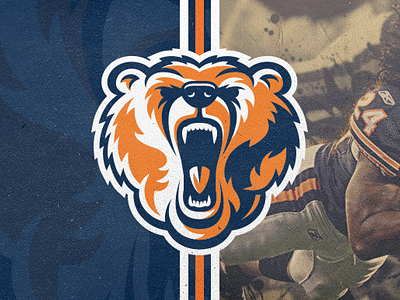 Chicago Bears for the Fans! logo brand identity sport company design bears chicago fans vector illustrator mascot