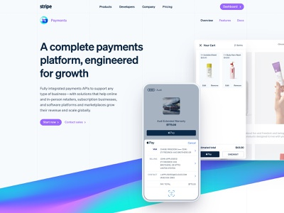 Payments checkout branding wave typography redesign gradient landing page stripe payments design