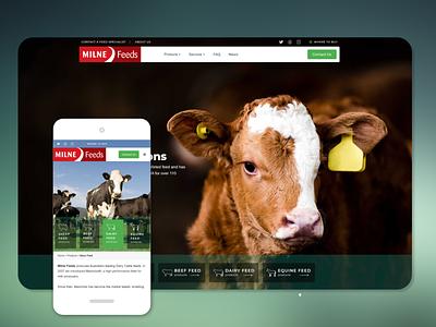 Milne Feeds web development site redesign webdesign design branding business website website
