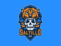 Saltillo MX