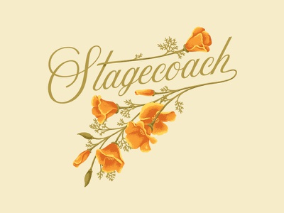 Stagecoach Flowers florals illustration vector stagecoach festival music country girl nature flowers