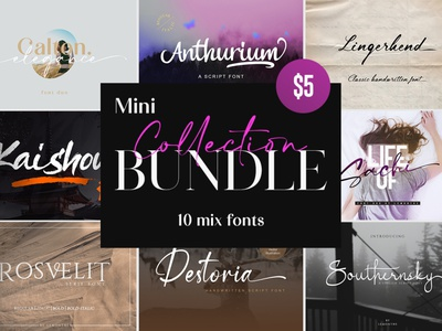 Mini Collection Bundle - 10 Mix Font logo brush calligraphy typography typeface handlettering fonts design branding