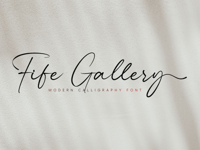 Fife Gallery - Modern Calligraphy Font typeface handlettering calligraphy typography branding design fonts