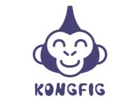 Kongfig